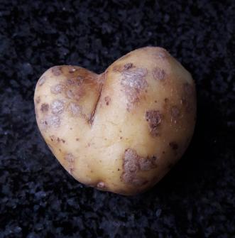 Aardappelliefde.png